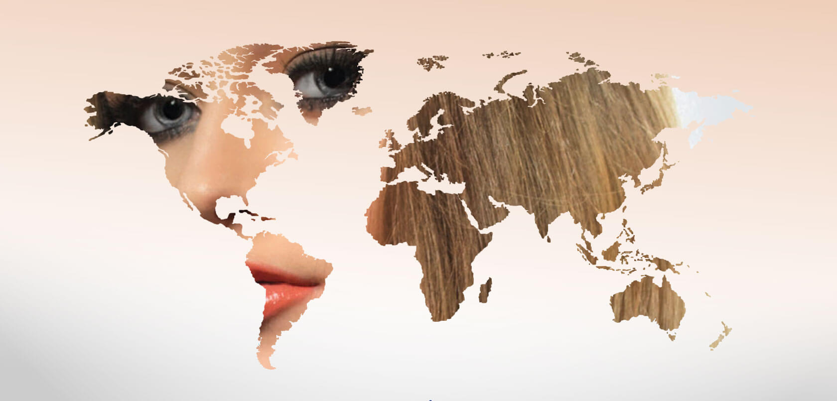 Motie Rubin Professionals- INTERNATIONAL DISTRIBUTION